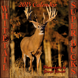 Whitetail Super Bucks 2013 Calendar