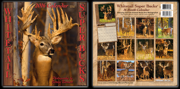 Whitetail Super Bucks 2016 Calendar