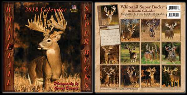 Whitetail Super Bucks 2018 Calendar